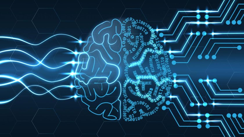 Human brain and technology